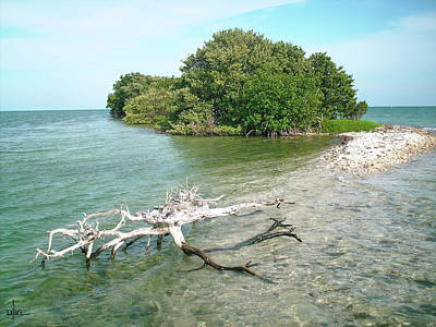 Photograph - Key Largo Out Island by David Bader