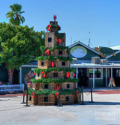 Photograph - Key West Christmas by Ules Barnwell