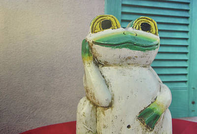Photograph - Key West Frogger by Jamart Photography
