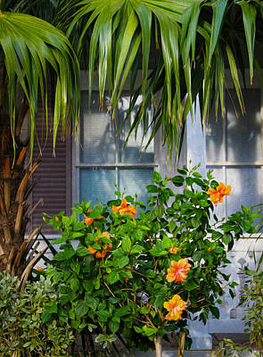Photograph - Key West Garden by Bonnie Follett