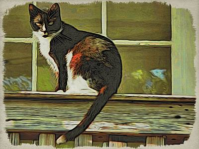 Photograph - Key West Kitty Kat by Alice Gipson