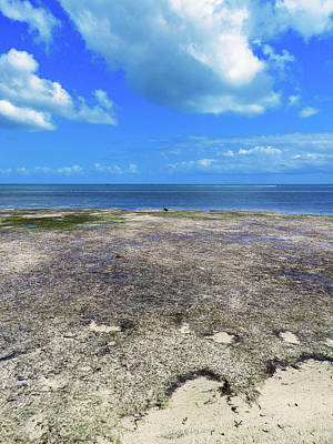 Photograph - Key West Low Tide Cloudscape by Bob Slitzan