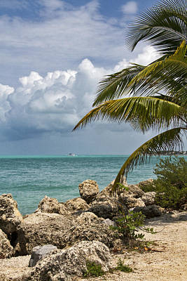 Photograph - Key West Paradise 4 by Bob Slitzan