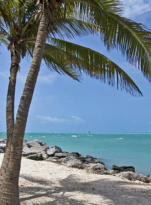 Photograph - Key West Paradise 5 by Bob Slitzan
