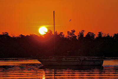 Photograph - Key West Sailboat Silhouette Sunrise by Bob Slitzan