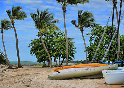 Photograph - Key West - Sailboats On Beach 3 by Ron Grafe