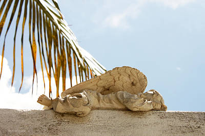 Photograph - Key West Sleeping Angel by Susan Vineyard