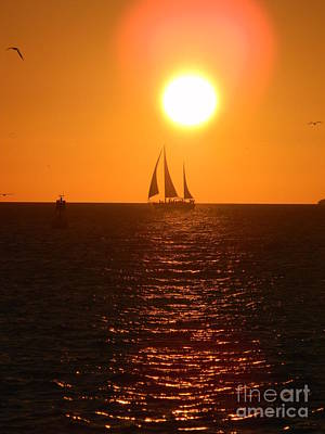 Photograph - Key West Sunset by Neil Zimmerman