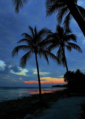 Photograph - Key West Sunset No 2 by Ron Grafe
