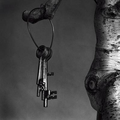 Photograph - Keys by Tim Nichols