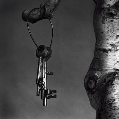 Photograph - Keys by Tim Nichols