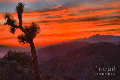 Photograph - Keys View Sunset At Joshua Tree by Adam Jewell