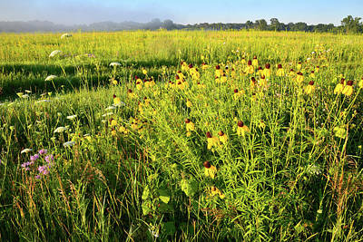 Photograph - Keystone Road Prairie In Glacial Park by Ray Mathis