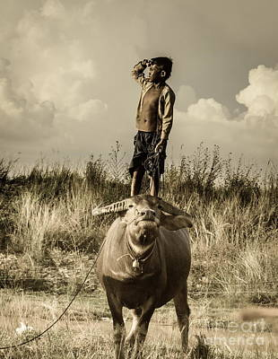 Photograph - Kid And Cow by Arik S Mintorogo