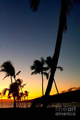 Photograph - Kihei Sunset by Fred Wilson