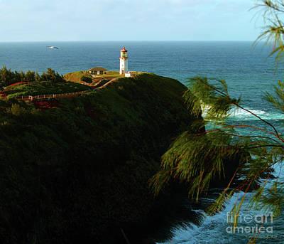 Photograph - Kilauea Lighthouse 1 by Patricia Griffin Brett