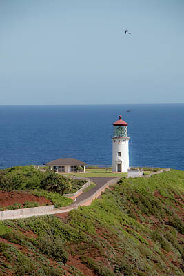 Photograph - Kilauea Lighthouse - Vertical by Teresa Wilson