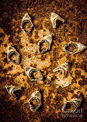 Biting Photograph - Killer Shark Jaws  by Jorgo Photography - Wall Art Gallery