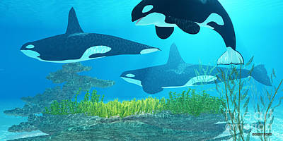 Orca Digital Art - Killer Whale Reef by Corey Ford