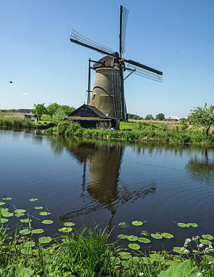 Photograph - Kinderdijk Windmill Reflection by Phil Cardamone