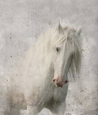 Equine Photograph - Kindness by Dorota Kudyba