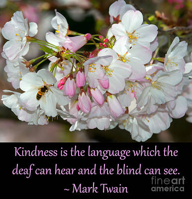 Photograph - Kindness Is The Language 2 by Glenn Franco Simmons