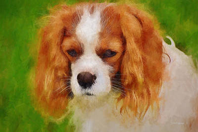 Photograph - King Charles - Painting by Ericamaxine Price