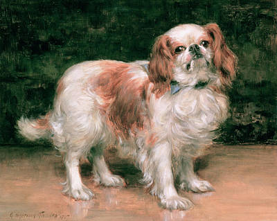 Dog Portrait Painting - King Charles Spaniel by George Sheridan Knowles