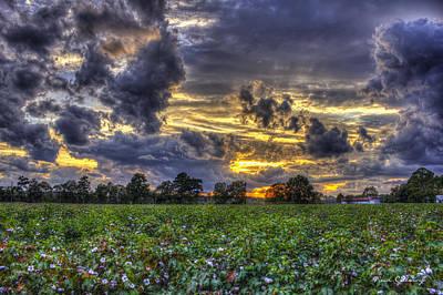 Cotton Field Photograph - King Cotton Sunset Art Statesboro Georgia by Reid Callaway