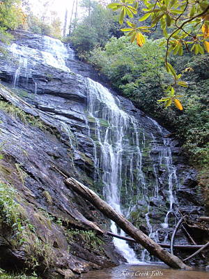 Photograph - King Creek Falls Oconee County Sc by Lane Owen