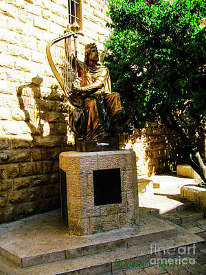 Photograph - King David by Donna L Munro