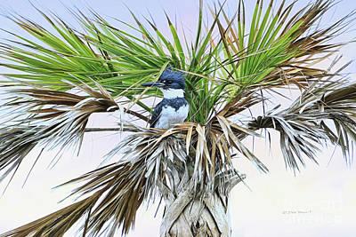 King Fisher Palm Print by Deborah Benoit