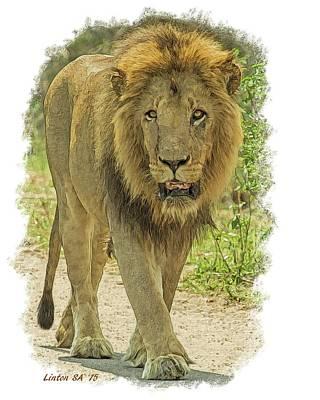 Digital Art - King Of Beasts 3 by Larry Linton