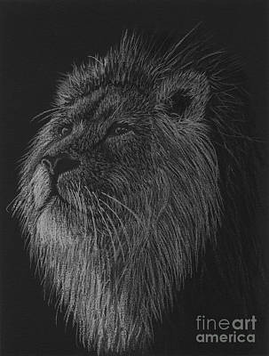 Drawing - King Of The Beasts - Black And White Drawing Of A Lion by Tracey Everington