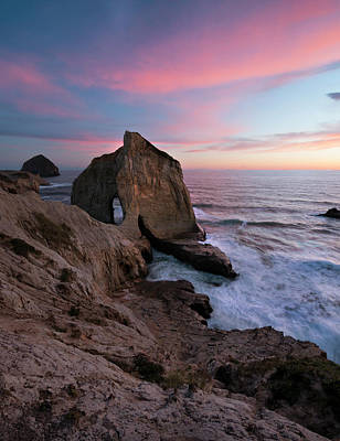 Oregon State Wall Art - Photograph - King Of The Coast by Ryan McGinnis
