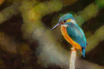 Kingfisher Painting - King Of The Fishers By Pierre Blanchard by Pierre Blanchard