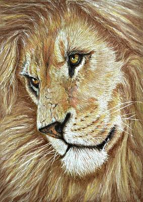 Art Print featuring the drawing King Of The Jungle by Heidi Kriel