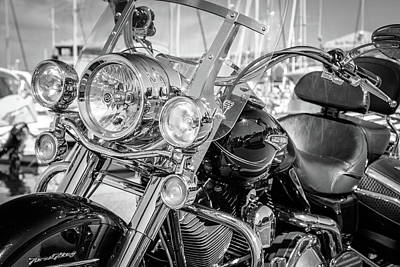 Photograph - King Of The Road by Michael Niessen