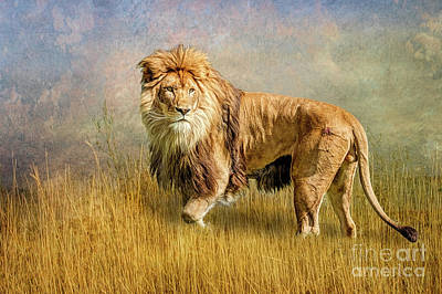 Photograph - King Of The Serengeti by Brian Tarr