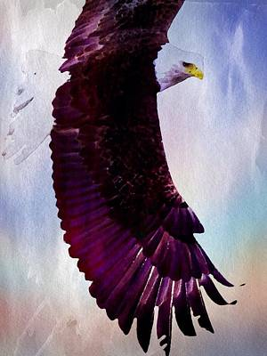 Painting - King Of The Skies by Mark Taylor