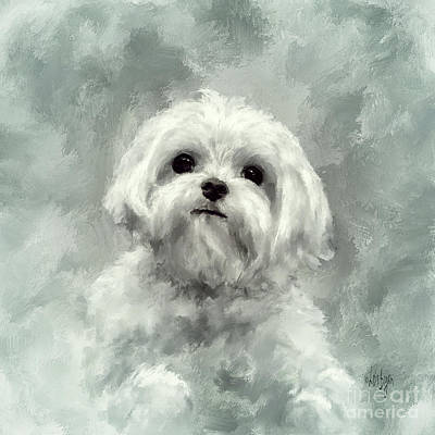 Maltese Puppy Wall Art - Digital Art - King Of The World In Teal Border by Lois Bryan