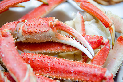 Photograph - King Snow Crab Legs Ready To Eat Closeup by Alex Grichenko