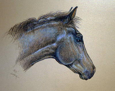 Drawing - King by Suzanne McKee