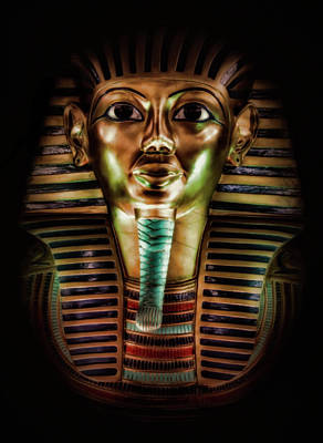 Photograph - King Tut  by Elaine Malott