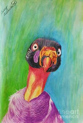 Drawing - King Vulture  by Cassy Allsworth