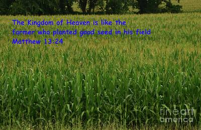 Photograph - Kingdom Of Heaven by Mark McReynolds