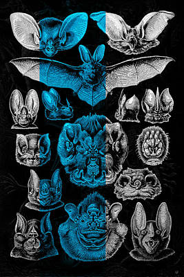Kingdom Of The Silver Bats Original by Serge Averbukh