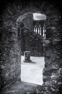 Photograph - Kingdom by Stewart Scott