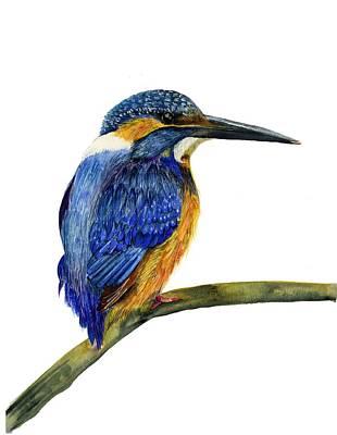 Painting - Kingfisher by Alison Langridge
