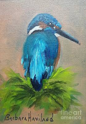 Painting - Kingfisher Bird by Barbara Haviland